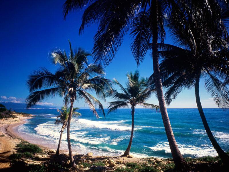 Какие тонкости туризма Доминикана предлагает нам