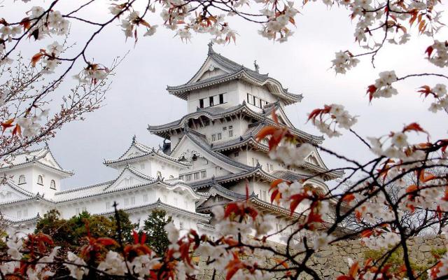 Что нужно знать перед поездкой в Японию?