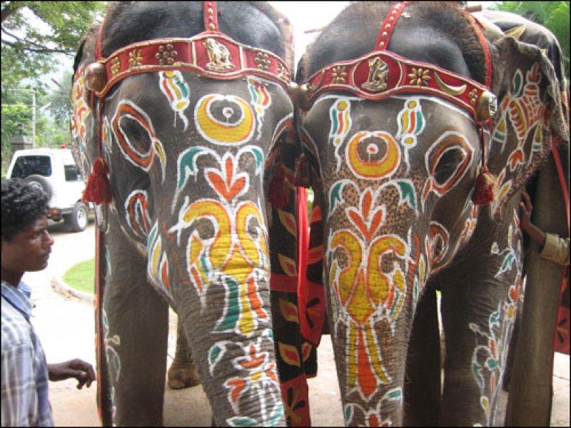 Советы для тех, кто собрался в путешествие по Индии