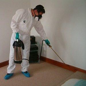 dezinfekciya kvartiru 300x300 Где купить надежное оборудование для дезинфекции подвалов?