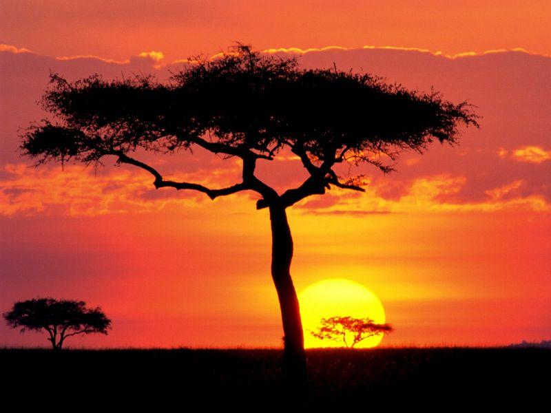 Планируем путешествие в Африку